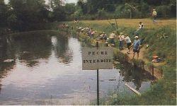 proibido pescar.jpg