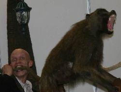 rabo do macaco.jpg